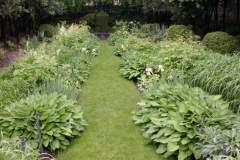 pianeta-rurale-piante-e-fiori-107