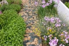 pianeta-rurale-piante-e-fiori-108