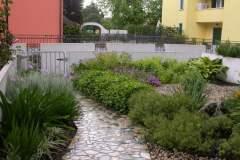pianeta-rurale-piante-e-fiori-132