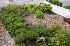 pianeta-rurale-piante-e-fiori-133