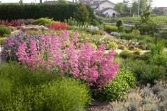 pianeta-rurale-piante-e-fiori-150