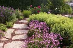 pianeta-rurale-piante-e-fiori-152
