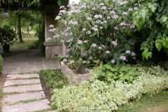 pianeta-rurale-piante-e-fiori-161