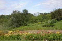pianeta-rurale-piante-e-fiori-49
