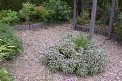 pianeta-rurale-piante-e-fiori-61