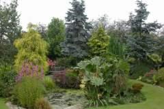 pianeta-rurale-piante-e-fiori-62