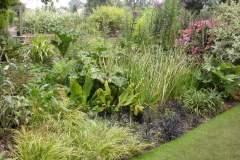 pianeta-rurale-piante-e-fiori-65