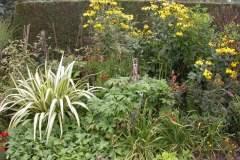 pianeta-rurale-piante-e-fiori-71