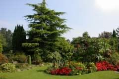 pianeta-rurale-piante-e-fiori-73