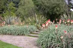 pianeta-rurale-piante-e-fiori-84