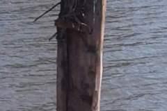 pianeta-rurale-posti-barca-104